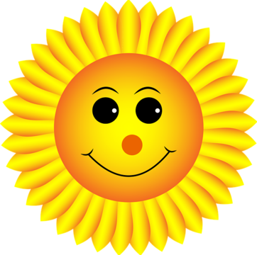 Sonnenblume-smiley-Fordon-Johnson.pixabay